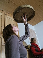 drum making,rawhide,sacred drumming,drum anatomy, make your own drum,heart,lungs,sacred path cards,jamie sams,hoop